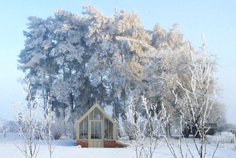 Gewächshaus im Schnee