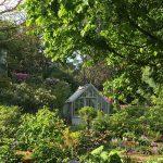 Das Gewächshaus im Sommergarten