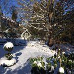 Winterruhe im Gewächshaus