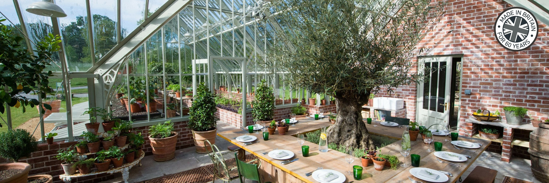 Blick in ein großes Alitex Gewächshaus - mediterran bepflanzt.