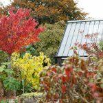 Das Greenhouse inmitten leuchtender Herbstfarben.