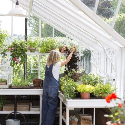 5Tipps für Zero-Waste-Gardening im Gewächshaus