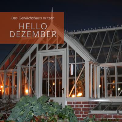 Hello Dezember – das Gewächshaus nutzen