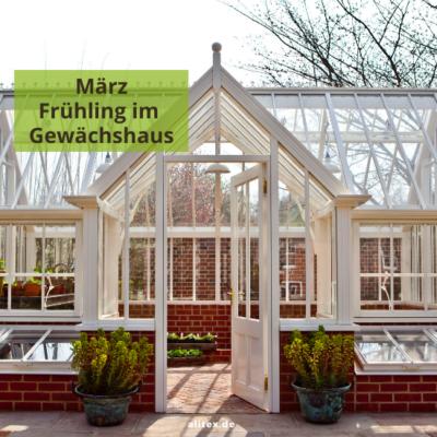 Hello März – Frühling im Gewächshaus