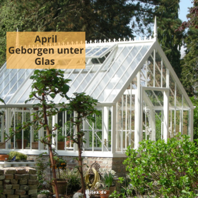 Hello April – Geborgen unter Glas