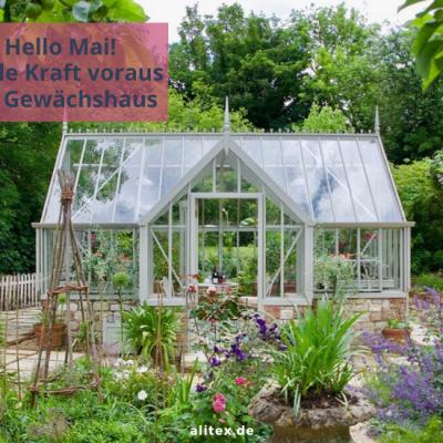 Hello Mai – Volle Kraft voraus im Gewächshaus!