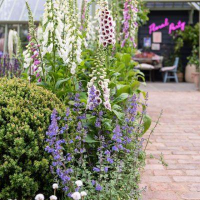 Chelsea Flower Show 2020 – Grüne festliche Gedanken