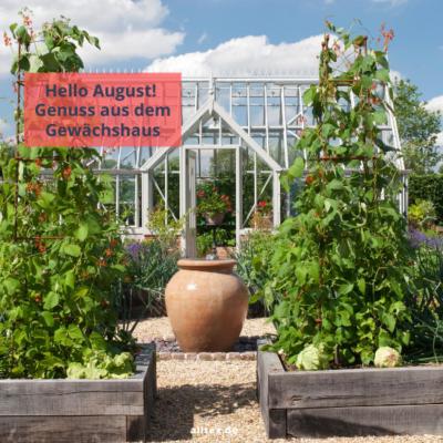Hello August – Genuss aus dem Gewächshaus