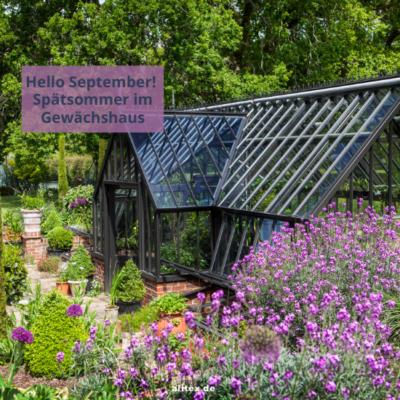 Hello September – Spätsommer im Gewächshaus